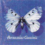Guccini - Parnassius Guccinii